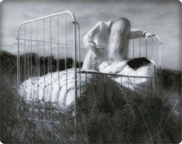 artwork_images_118591_433775_elizafrenchjeff-charbonneau