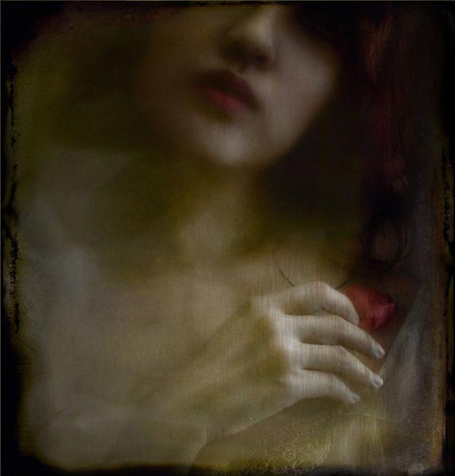 Vanessa Ho Bilder9